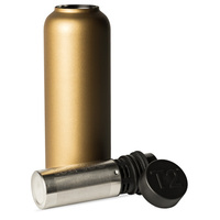 T2 Stainless Steel Flask - Gold
