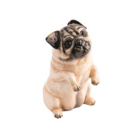 John Beswick Pampered Pooches Fawn Pug