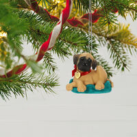2019 Hallmark Keepsake Ornament - Puppy Love Great Dane