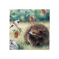 Fauna of Australia - Echidna and Finch Trivet