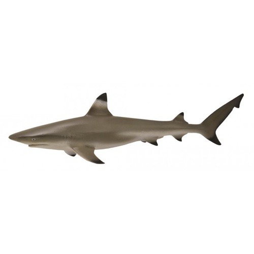 CollectA Sea Life - Blacktip Reef Shark