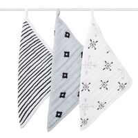 aden & anais Muslin Washcloths 3 Pack - Lovestruck