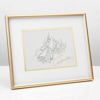Disney Collectable By Widdop And Co Framed Print - Cinderella