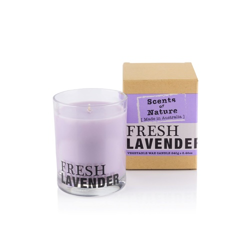 Scents of Nature by Tilley Soy Candle - Fresh Lavender