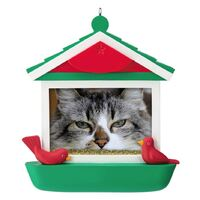 2019 Hallmark Keepsake Ornament - Cat in Bird Feeder 2019 Photo Frame