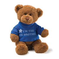 Gund Bears - Big Brother